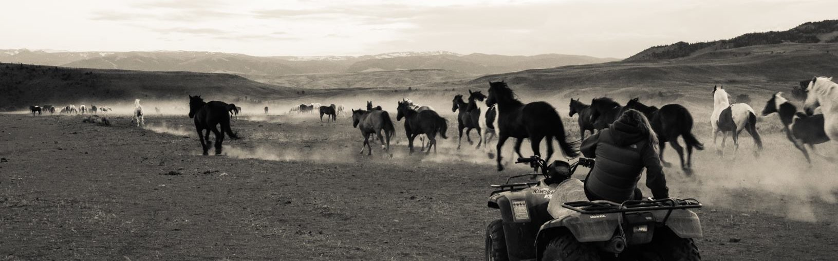 Live and work in the fun environment of a dude ranch in Wyoming ...